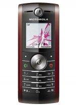 Фото Motorola W208