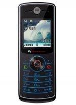 Фото Motorola W180